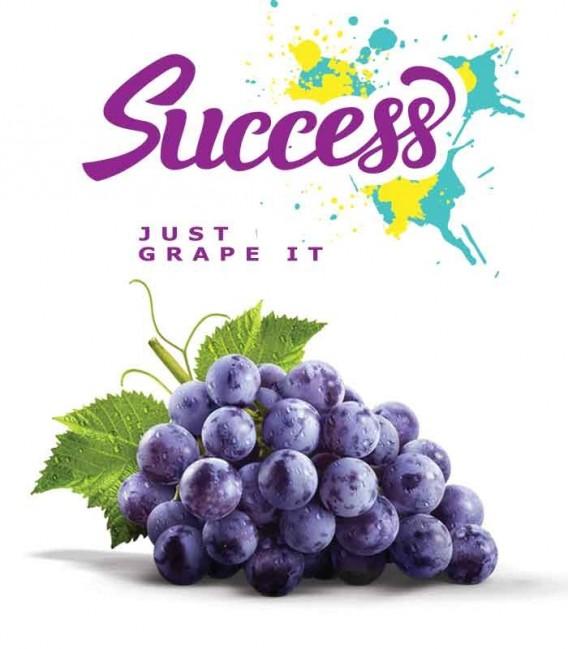 Success - Concentrato 30ml