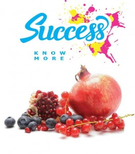 "SUCCESS - ""Easy 2 Vape"" - mix series 25ml"