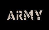 Army Box Mod